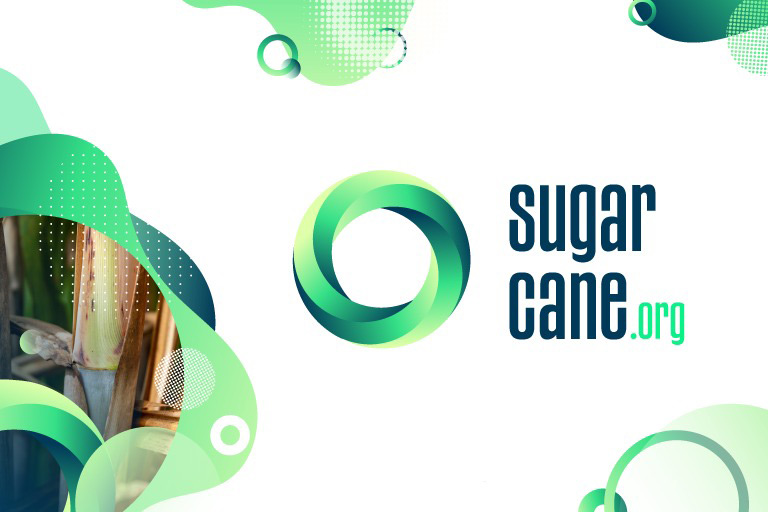 Sugarcane harvest for the second half of April 2021