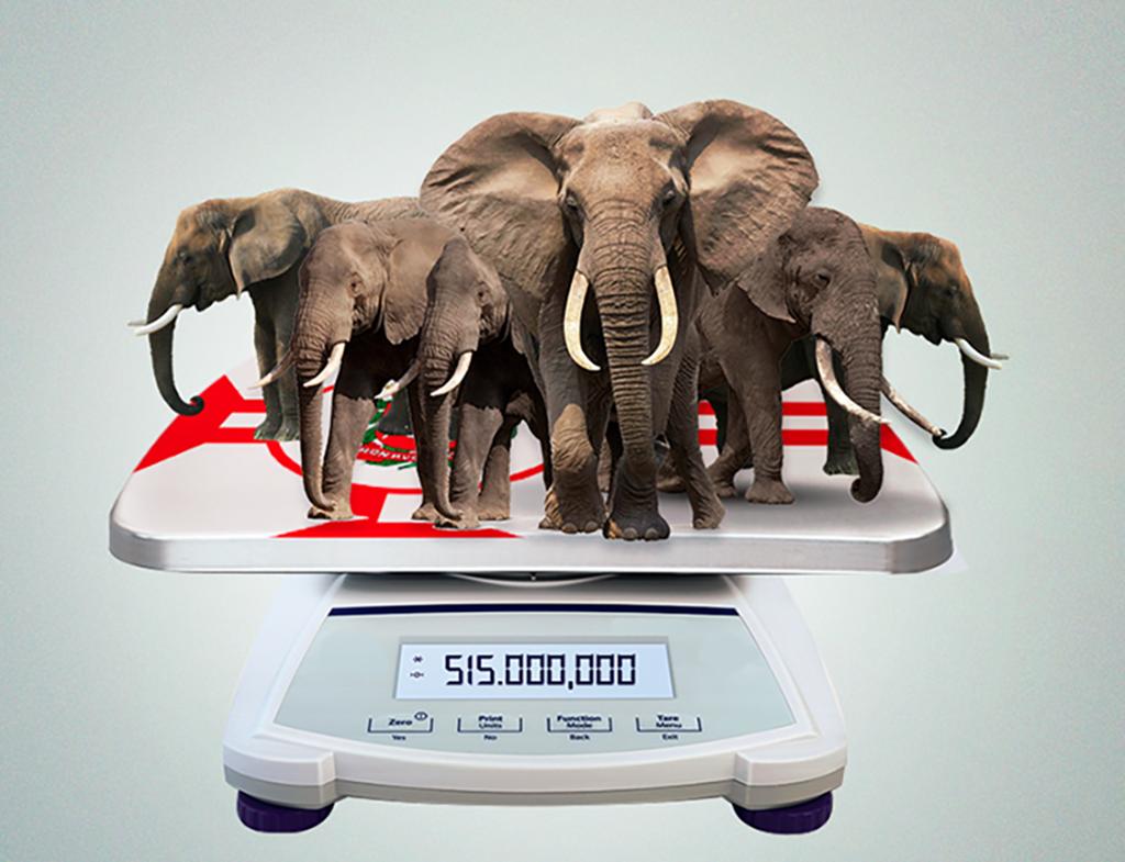 One hundred million elephants