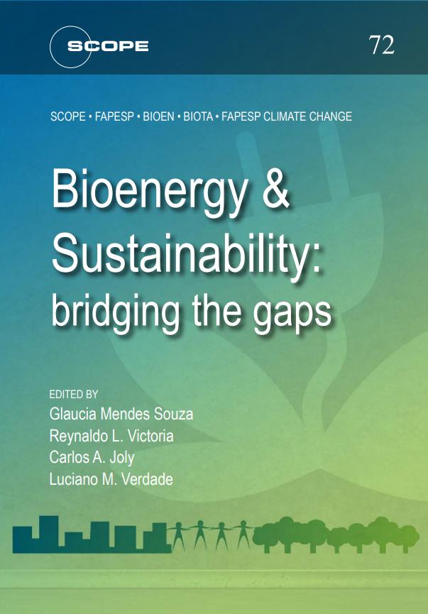 Bioenergy & Sustainability: bridging the gaps