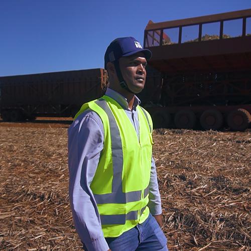 Sugarcane Labor Conditions