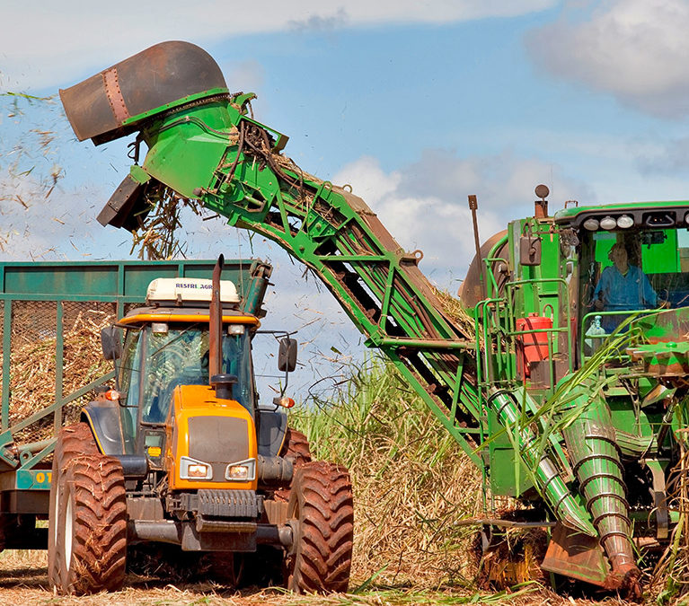 Sugarcane harvest for the second half of may 2021