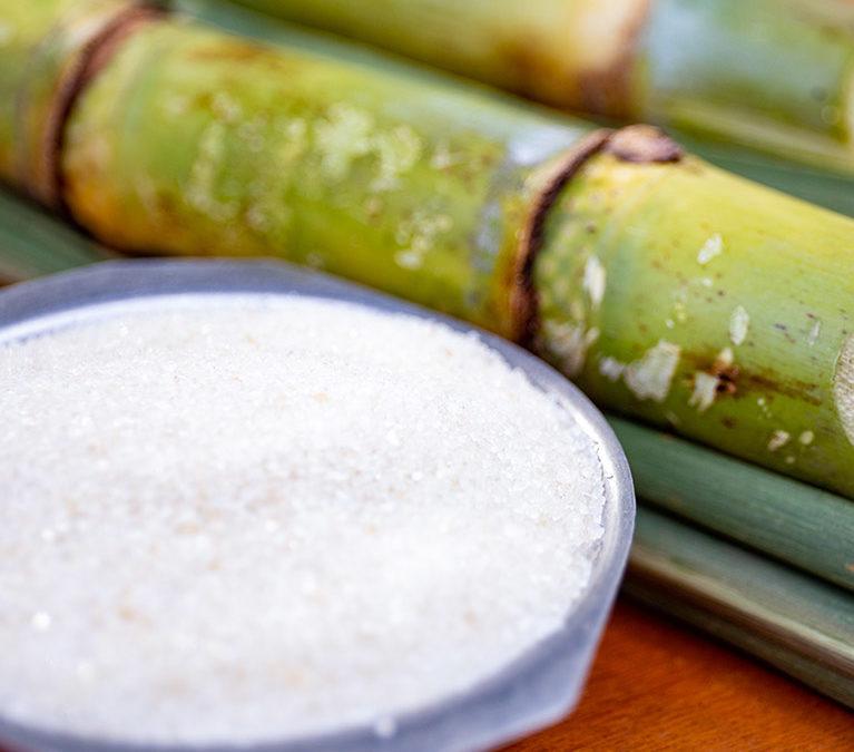 Sugarcane harvest for the second half of July 2021